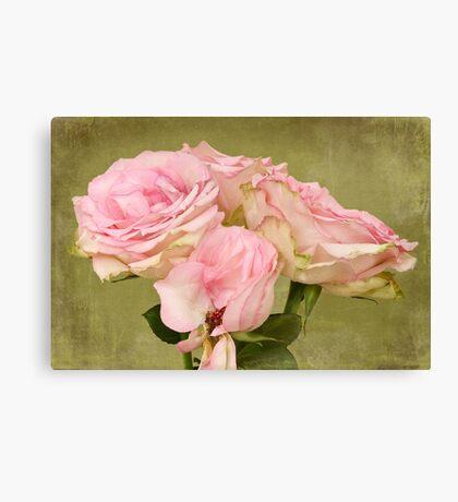 Aged Beauty Canvas Print