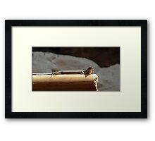 Skink on a Stick Framed Print