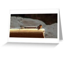 Skink on a Stick Greeting Card