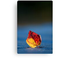 It's Fall in the Details, Take 2 Canvas Print