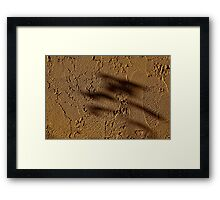 Zen Shadows Framed Print