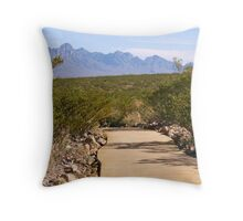 Chihuahuan Desert Nature Park Throw Pillow