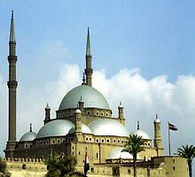 Mosque of Muhammad Ali by Wayne Gerard Trotman