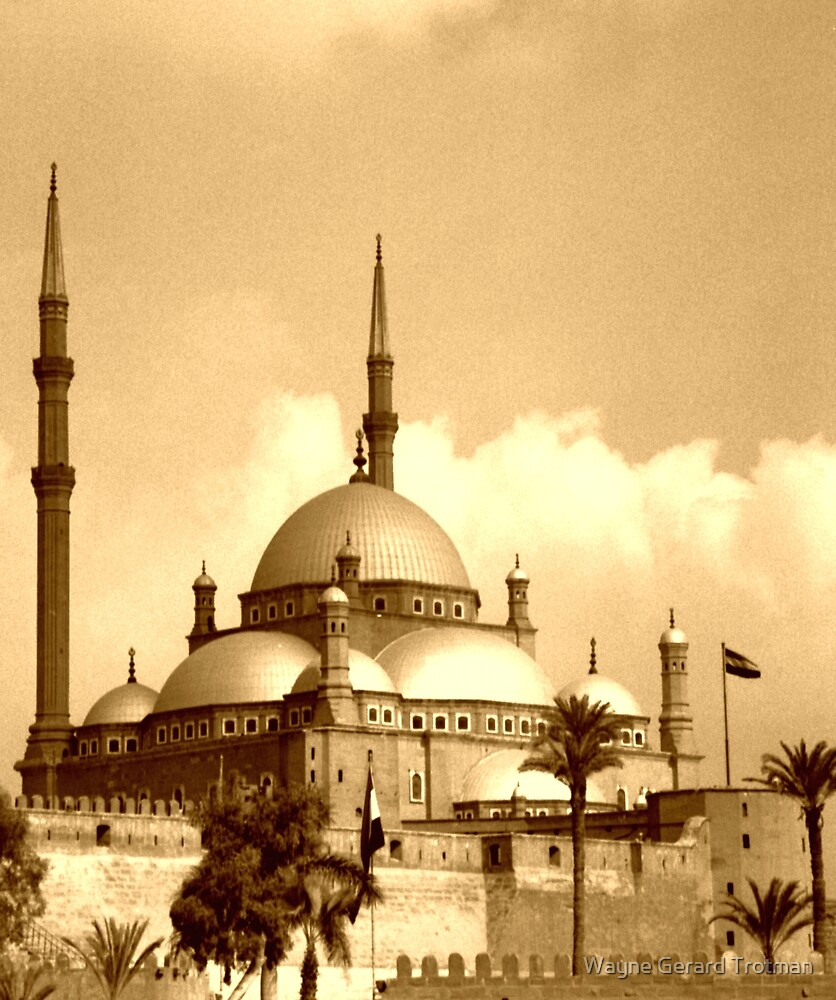 Mosque of Muhammad Ali (Sepia) by Wayne Gerard Trotman