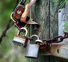 Locked Up Tight! by rasnidreamer