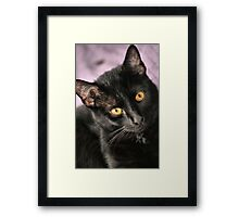 I'm so pretty..... Framed Print