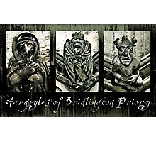 Gargoyles of Bridlington Priory  Photographic Print