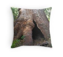 Ancient Tingle Tree. Throw Pillow