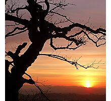 good evening! Photographic Print