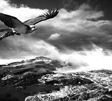 """In Flight Catering"" by Mike Larder"