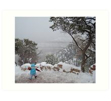 Winter Challenges at the Grand Canyon Art Print