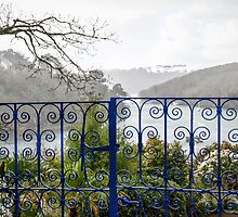 Beyond The Blue Gates by Susie Peek