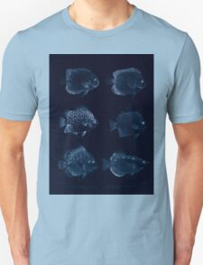 The fishes of India by Francis Day 027 - Inverted - Holacanthus Annularis, H Xanthurus, Scatophagus Argus, Ephippus Orbis, Drepane Punctata, Toxotes Chatareus Unisex T-Shirt