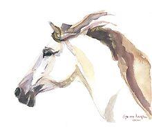 Horse - Julia  Photographic Print