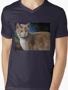 Beautiful Furry and Fluffy Brown Cat Portrait Mens V-Neck T-Shirt