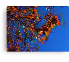 Blowing Leaves HDR Canvas Print