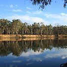 Murray Reflections by Fiona Kersey