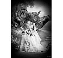 Elephant woman Photographic Print