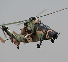 ARH Tiger at Oakey by UpUpandAway