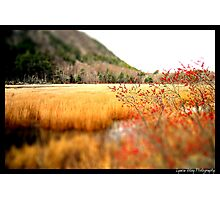 The Tarn Photographic Print