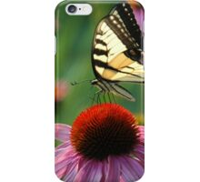 A Rainbow of Color: Tiger Swallowtail on Echinacea iPhone Case/Skin
