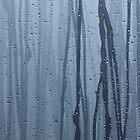 Furukawa Onsen: blue by yvesrossetti