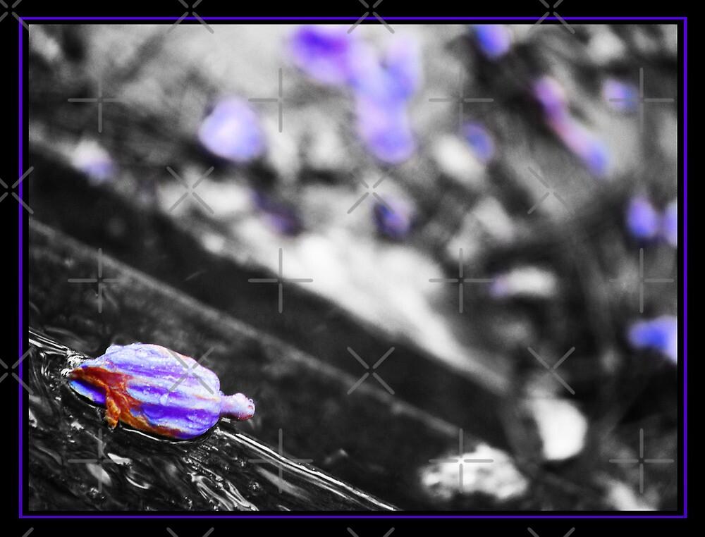 Purple after-tones by R-evolution GFX