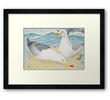 Seagulls at rest on a clifftop Framed Print
