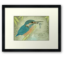 The Kingfisher goes fishing! Framed Print