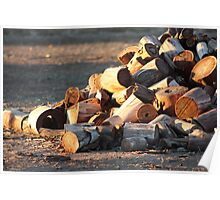 Morning Wood Pile Poster