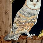 A Barn Owl in a barn - where else! by aquartistic