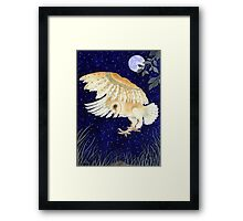 A Barn Owl eyes up its prey Framed Print