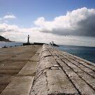 Kalk Bay seagulls by fourthangel