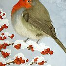 A Robin in the winter snow by aquartistic