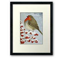 A Robin in the winter snow Framed Print