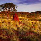 Morning Light on the Pilbara - Western Australia by Mark Shean