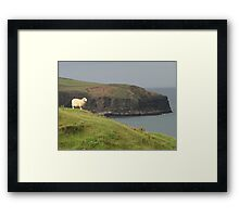 Sheep surveying kingdom Framed Print