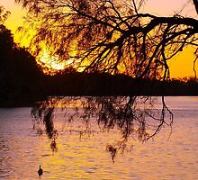 Murray Sunset by Clive