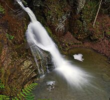 Button Falls by Stephen Beattie