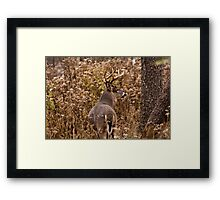 The Hunted Framed Print