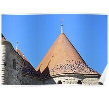 Carcassonne, La Cite with Birds Poster