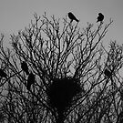 Crow Tree by KaliBlack