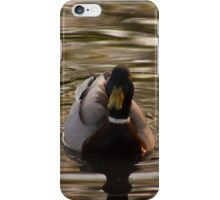 Duck on the canal iPhone Case/Skin
