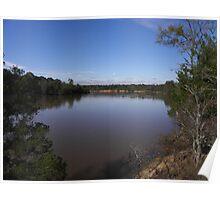 altamaha river view Poster