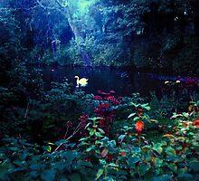 heavenly light leak, kelsey park, beckenham, u.k. by Bruce Miller