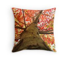 maple leaves from here Throw Pillow