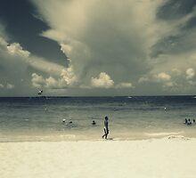 fading beaches by kasparh
