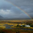 Rainbow Glow - Thingvellir, Iceland by Amy Hale