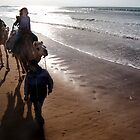 Children on Camels, Essaouira, Morocco by bevgeorge