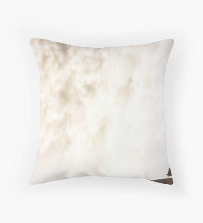 Butterfly at Iguazu Throw Pillow